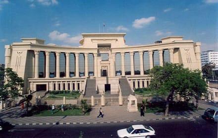 حكم حديث لـ «الدستورية العليا» بشأن اكتساب الجنسية المصرية