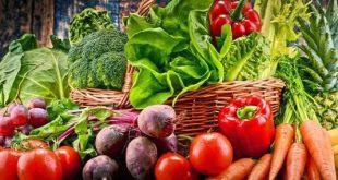 الطماطم والباذنجان يتصدران والكوسة تتراجع في سوق العبور اليوم