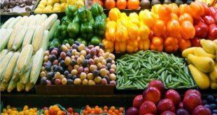 الطماطم تنخفض جنيه والفلفل 10 جنيهات اليوم الخميس